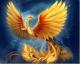 Phoenix19