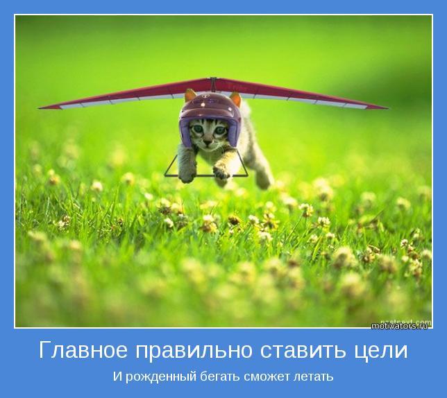 И рожденный бегать сможет летать
