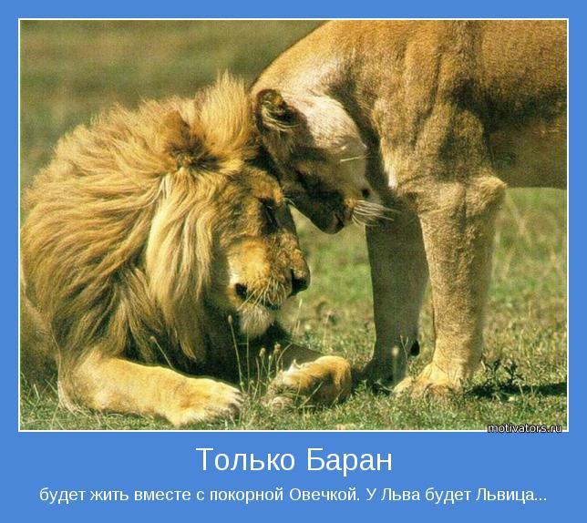 будет жить вместе с покорной Овечкой. У Льва будет Львица...