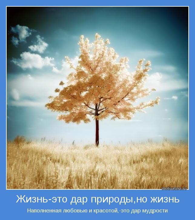 Наполненная любовью и красотой,-это дар мудрости
