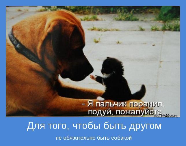 http://motivators.ru/sites/default/files/imagecache/main-motivator/motivator-15942.jpg