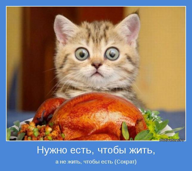 а не жить, чтобы есть (Сократ)