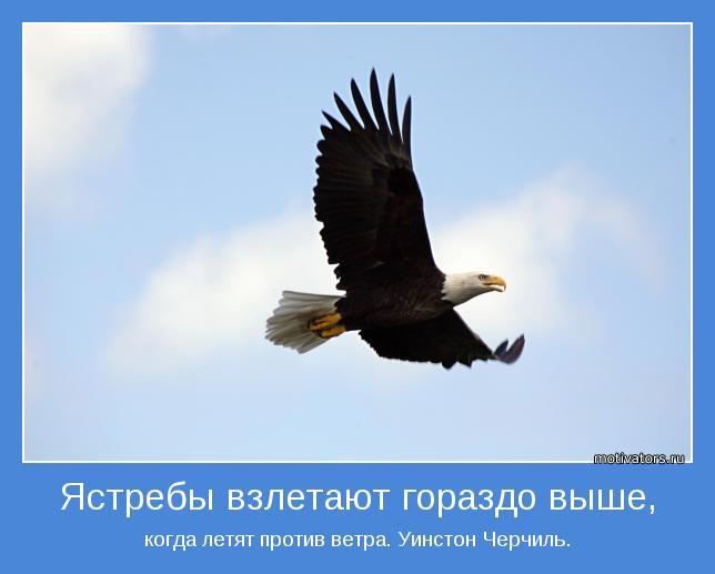 когда летят против ветра. Уинстон Черчиль.
