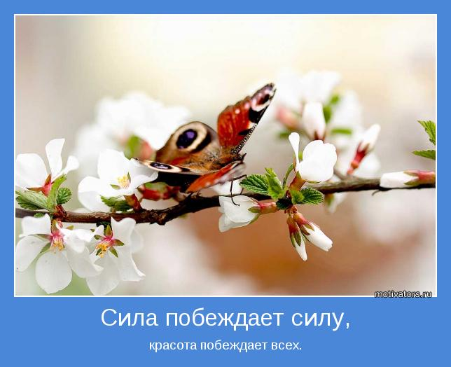 http://motivators.ru/sites/default/files/imagecache/main-motivator/motivator-17622.jpg