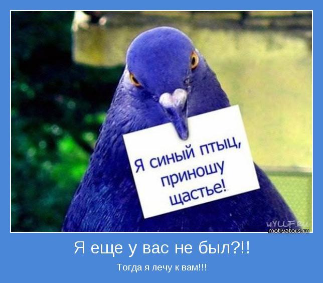 Птицезверомотиваторы