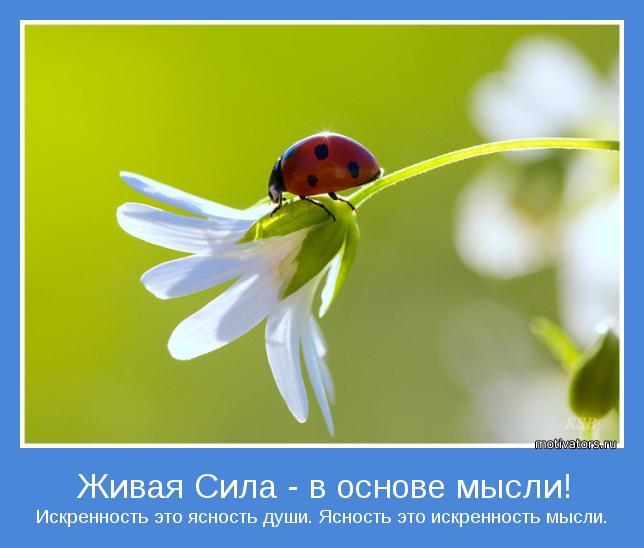 Искренность это ясность души. Ясность это искренность мысли.