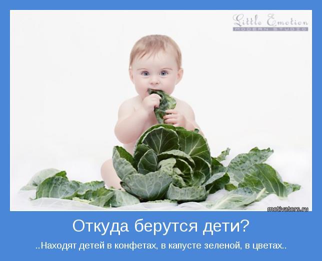 ..Находят детей в конфетах, в капусте зеленой, в цветах..