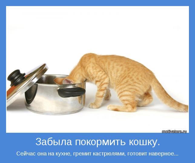 Сейчас она на кухне, гремит кастрюлями, готовит наверное...