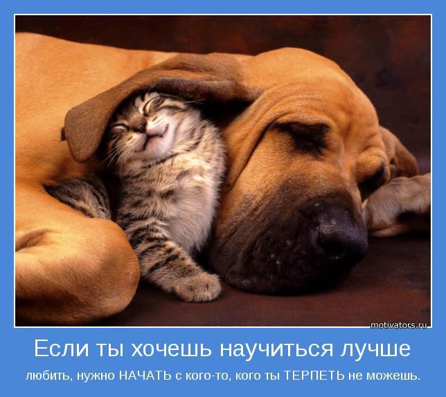 любить, нужно НАЧАТЬ с кого-то, кого ты ТЕРПЕТЬ не можешь.