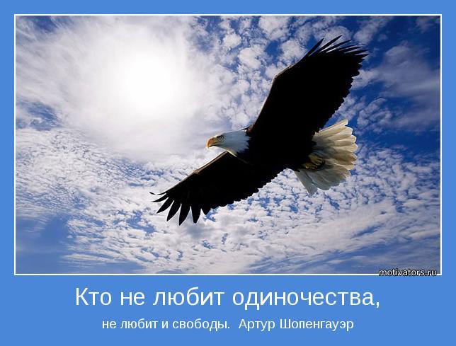 не любит и свободы.  Артур Шопенгауэр