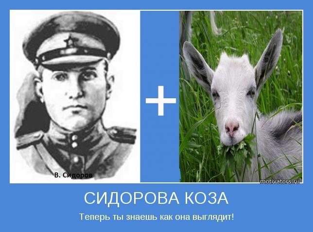Как сидорову козу