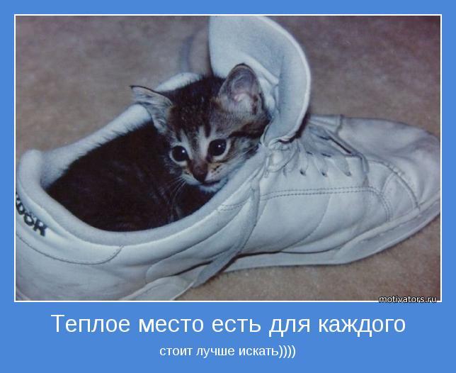 стоит лучше искать))))