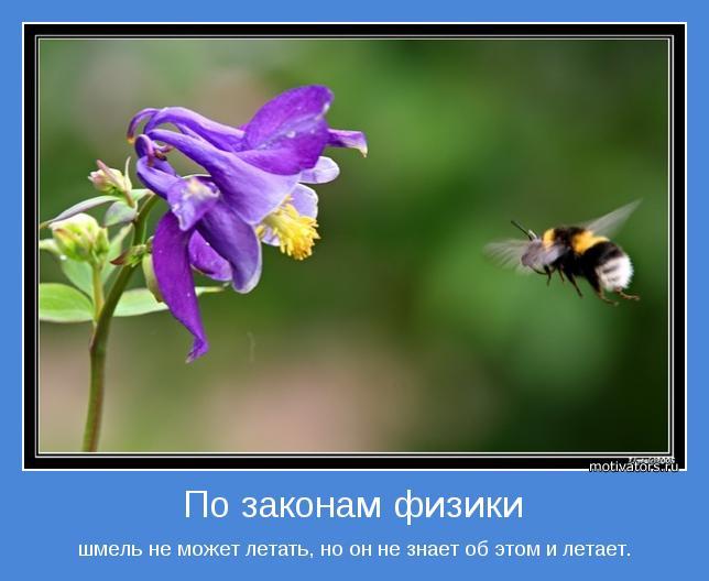 http://motivators.ru/sites/default/files/imagecache/main-motivator/motivator-32321.jpg