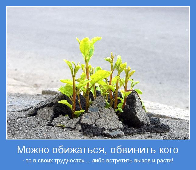 http://motivators.ru/sites/default/files/imagecache/main-motivator/motivator-33751.jpg