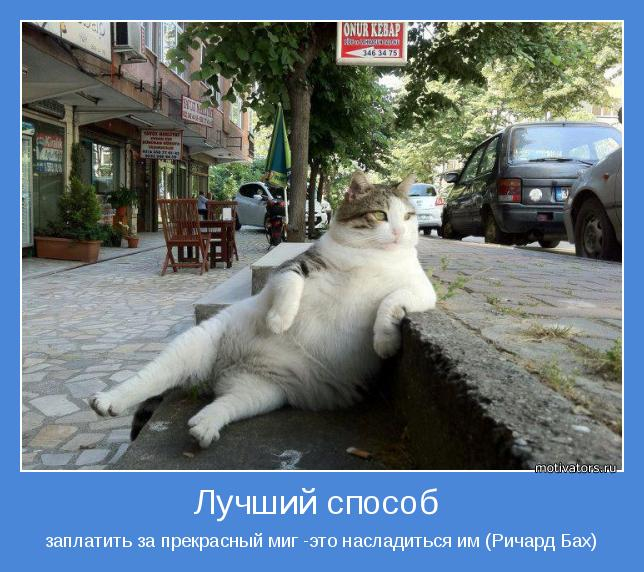 http://motivators.ru/sites/default/files/imagecache/main-motivator/motivator-36625.jpg