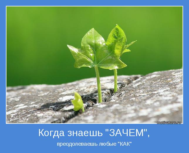 http://motivators.ru/sites/default/files/imagecache/main-motivator/motivator-36851.jpg