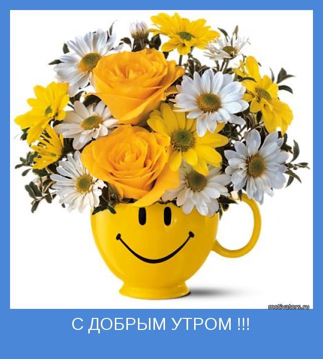 Фотоблоги позитивные картинки my page