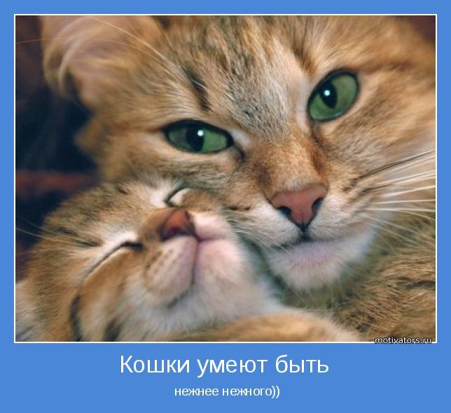 нежнее нежного))