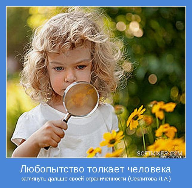 заглянуть дальше своей ограниченности (Секлитова Л.А.)