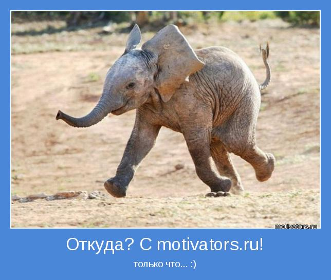 http://motivators.ru/sites/default/files/imagecache/main-motivator/motivator-40993.jpg