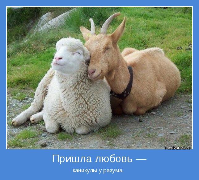 http://motivators.ru/sites/default/files/imagecache/main-motivator/motivator-41495.jpg