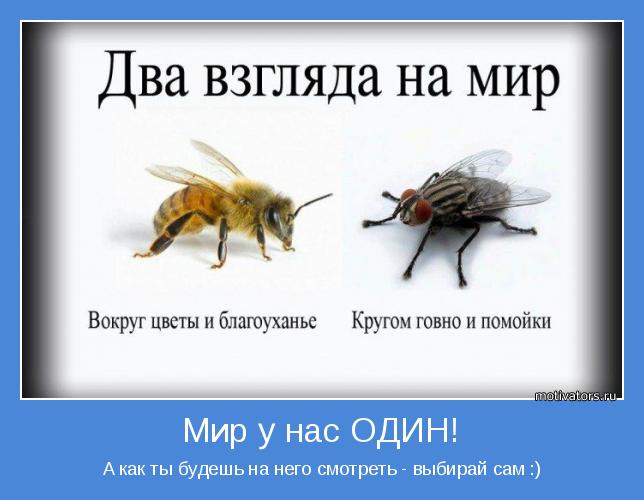 http://motivators.ru/sites/default/files/imagecache/main-motivator/motivator-41725.jpg