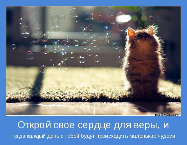 тогда каждый день с тобой будут происходить маленькие чудеса