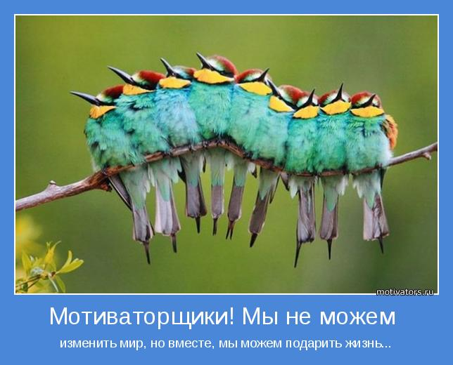 изменить мир, но вместе, мы можем подарить жизнь...