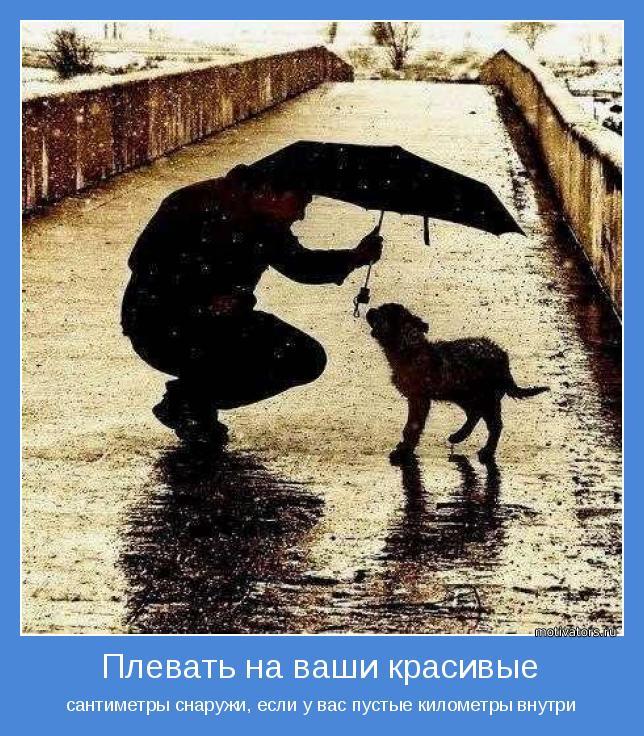 http://motivators.ru/sites/default/files/imagecache/main-motivator/motivator-42720.jpg