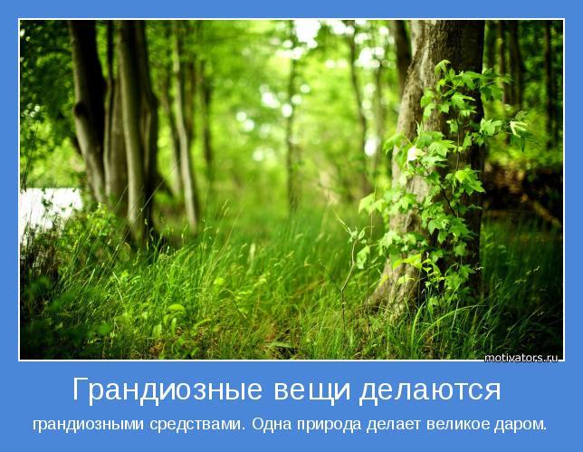 грандиозными средствами. Одна природа делает великое даром.