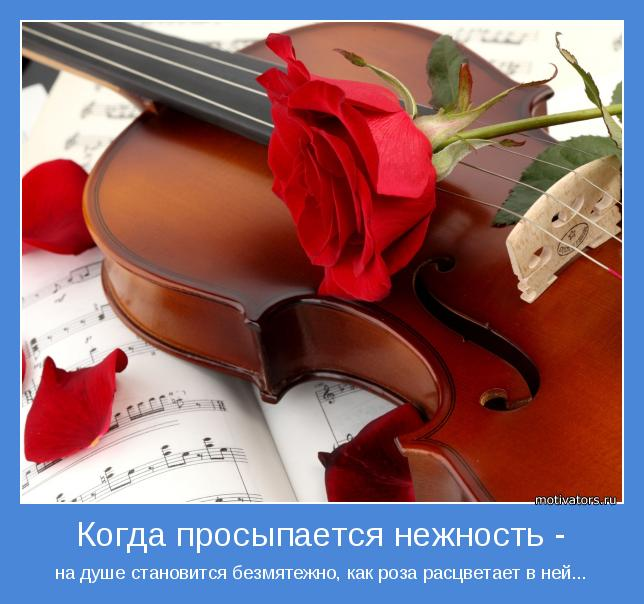 на душе становится безмятежно, как роза расцветает в ней...