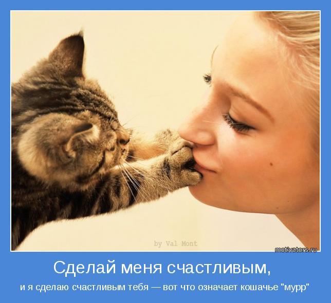 """и я сделаю счастливым тебя — вот что означает кошачье """"мурр"""""""
