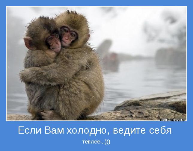 http://motivators.ru/sites/default/files/imagecache/main-motivator/motivator-43602.jpg