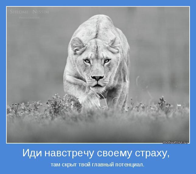подборка от стасевича - Страница 3 Motivator-44214