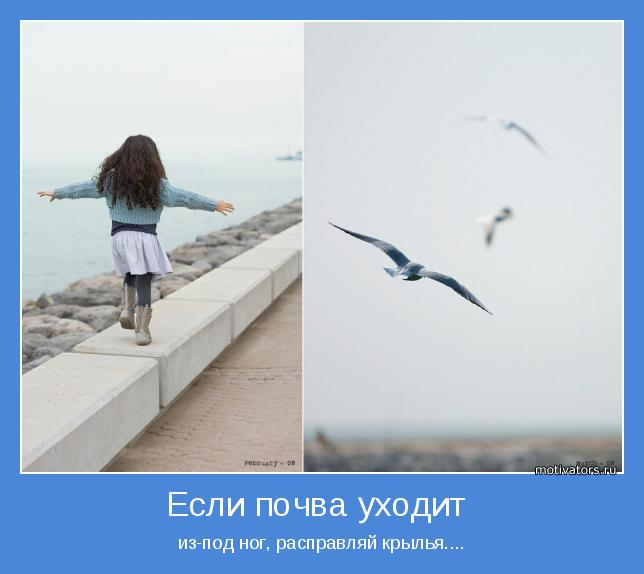 из-под ног, расправляй крылья....