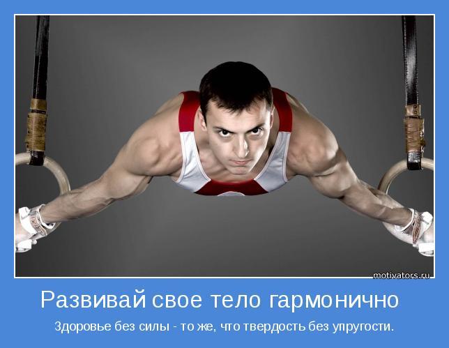 Здоровье без силы - то же, что твердость без упругости.