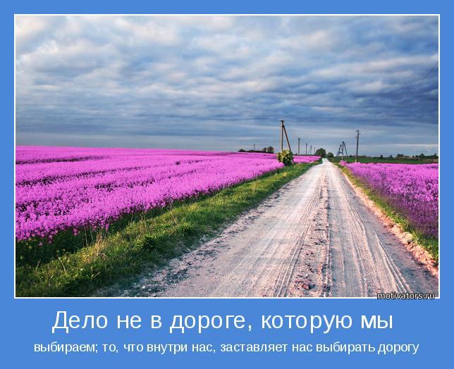 выбираем; то, что внутри нас, заставляет нас выбирать дорогу