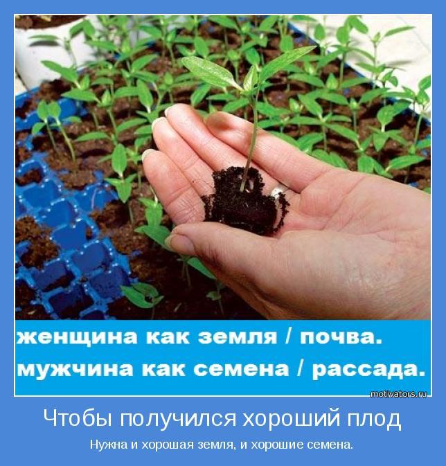 Нужна и хорошая земля, и хорошие семена.