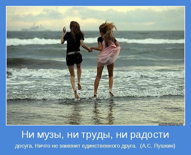 досуга, Ничто не заменит единственного друга.  (А.С. Пушкин)