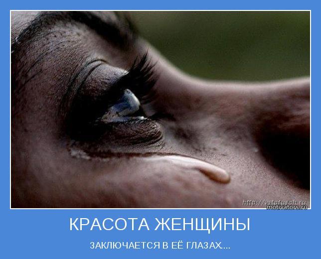 http://motivators.ru/sites/default/files/imagecache/main-motivator/motivator-48824.jpeg