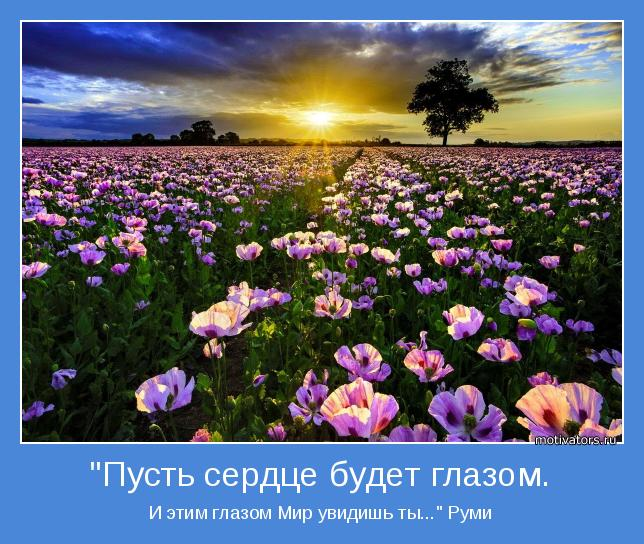 motivator-49414.jpg