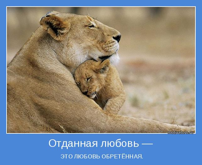 http://motivators.ru/sites/default/files/imagecache/main-motivator/motivator-50301.jpg