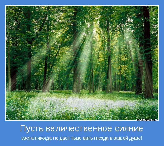 света никогда не дает тьме вить гнезда в вашей душе!