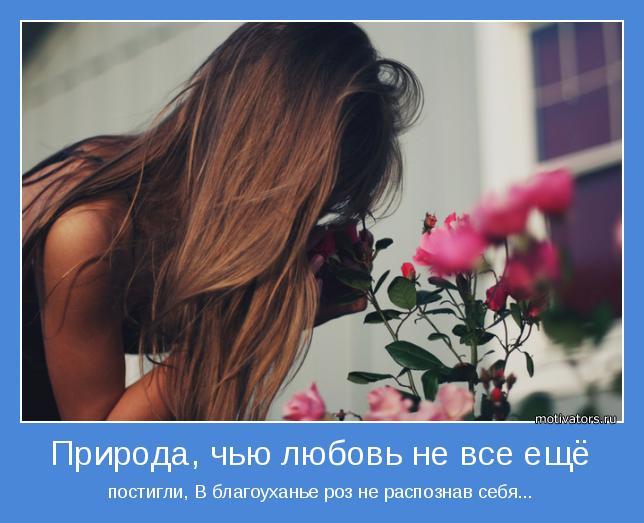 постигли, В благоуханье роз не распознав себя...