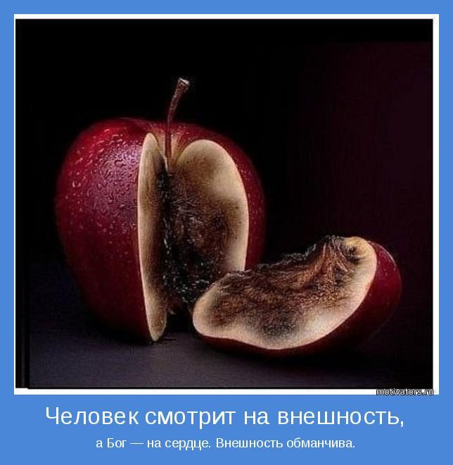 гнилое яблоко фильм: