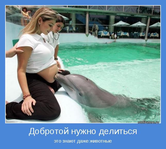 http://motivators.ru/sites/default/files/imagecache/main-motivator/motivator-52201.jpg