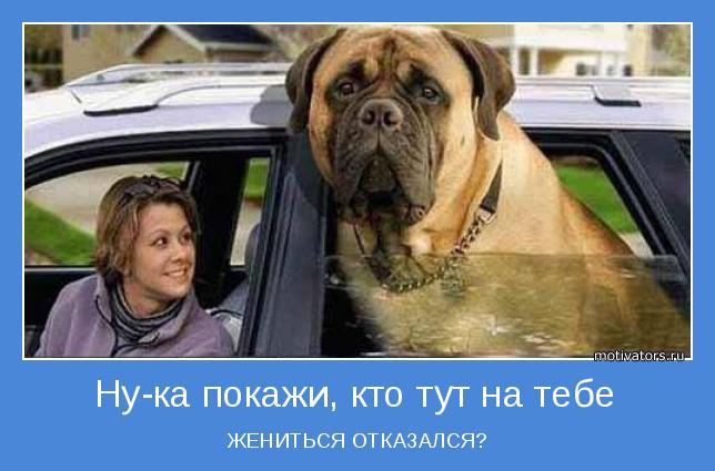 http://motivators.ru/sites/default/files/imagecache/main-motivator/motivator-52360.jpg