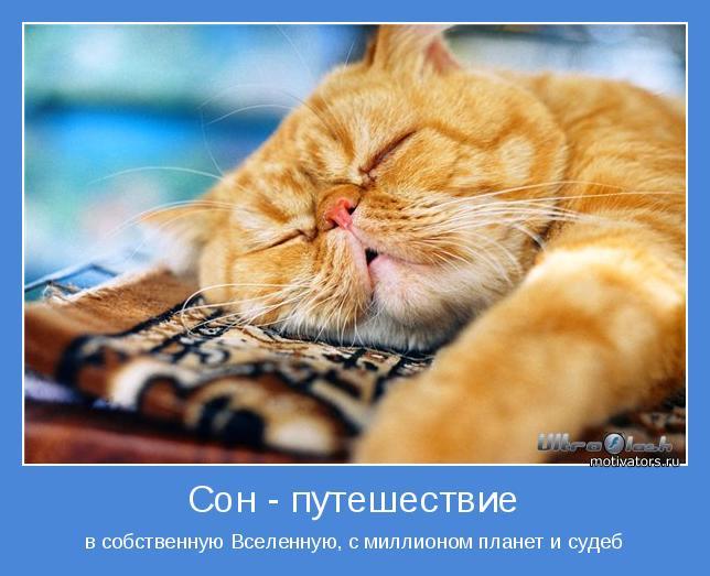 http://motivators.ru/sites/default/files/imagecache/main-motivator/motivator-52624.jpg