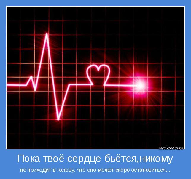 Сердце с экг фото