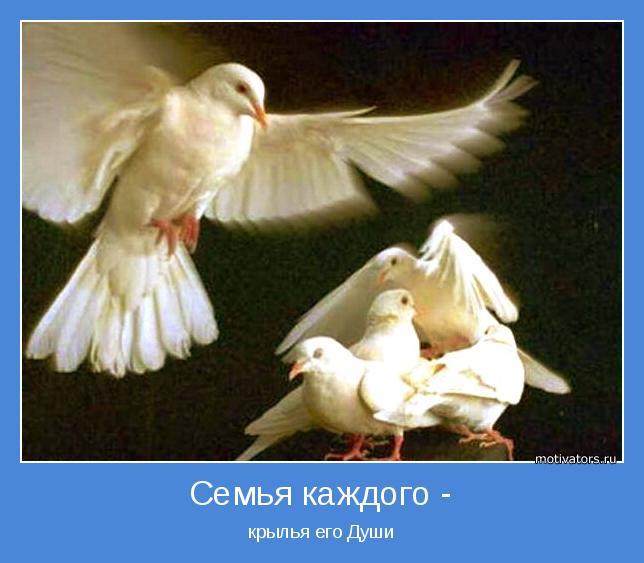 крылья его Души